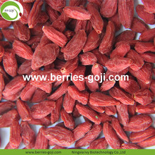 Wholesale Bulk Vitamins Eu Standard Goji Berries