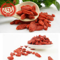Thick Red Dried Berry Goji Berries Fruit