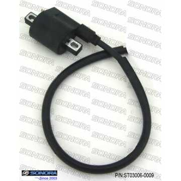 Am6 engine Ignition Coil