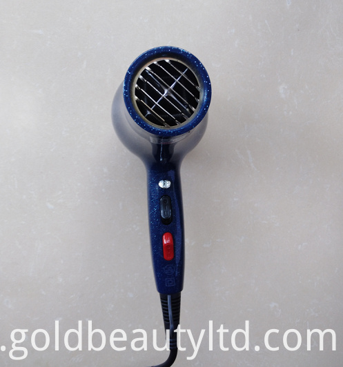 Worldwide Personal Use Hair Dryer