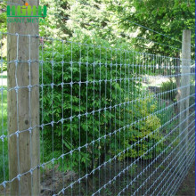 surrounding knot galvanized wire mesh deer fencing