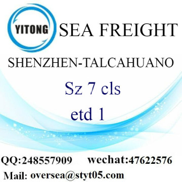 Shenzhen Port LCL Consolidation To Talcahuano