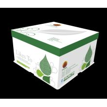 Customized for Take Away Packaging White Cardboard Boxes with Lid supply to Honduras Wholesale