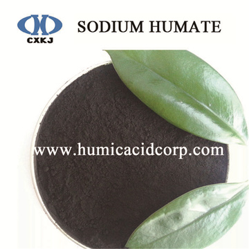 Factory wholesale price for High Water Soluble Sodium Humate Sodium humic acid organic fertilizers feed additive supply to Dominican Republic Factory