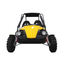 gasoline beach buggy 250cc 2 seater go karts