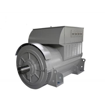 Special High Voltage 50Hz Industry Generators