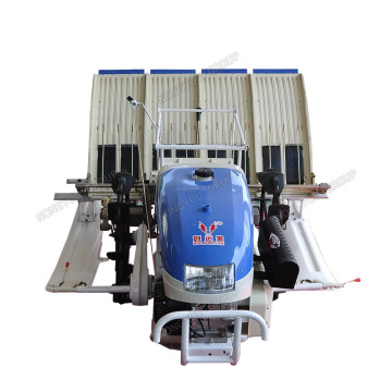 Machine Planter OEM Manual Rice Planting Machine 2ZS-4A