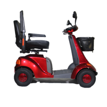 Luxury Convenient Dynamoelectric scooter