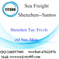Shenzhen Port LCL Consolidation To Santos