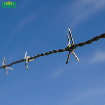 Wholesale Price Per Roll Galvanized Barbed Wire