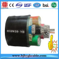 Concentric 3X16RE/16mm2 0.6/1 kV power cable