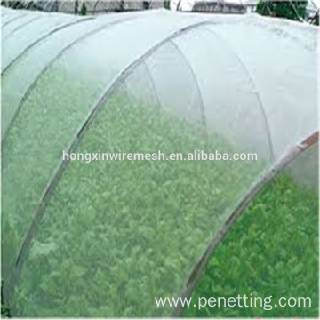 Anti Insect Netting for Greenhouse Protection