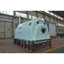 Fast Delivery for Biomass Power Generation Steam Driven Electric Generator from QNP supply to China Hong Kong Importers