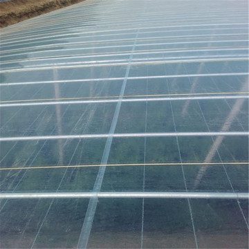 150Microns Thick Greenhouse Film