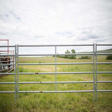 Electe Flexible Composite Rail Horse Fence