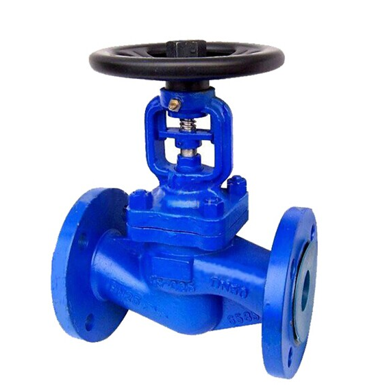 DN60 Double Bellow Seal Globe Valve