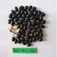 supply black kidney beans