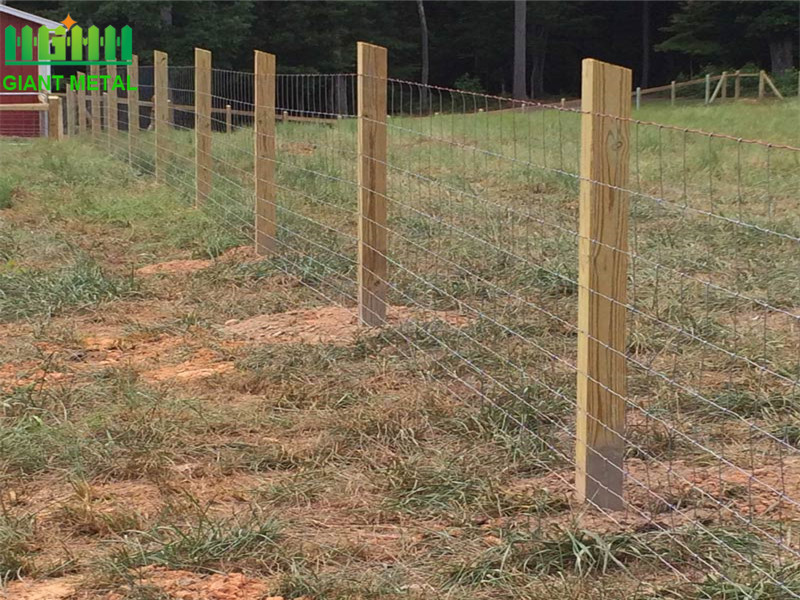 Hot Dipped Galvanized Farm Fence