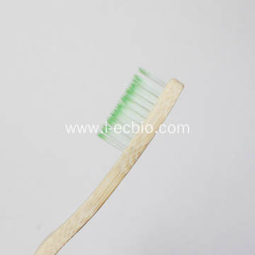 Creative Design of Bamboo Toothbrush
