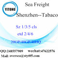 Shenzhen Port Sea Freight Shipping To Tabaco