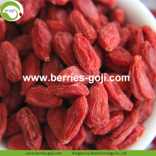 Supply Wholesale Fruit Sweet Low Pesticide Goji Berries