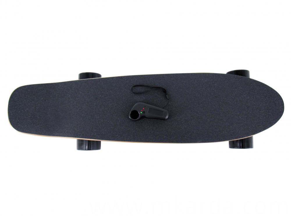 Remote Fish Electric Skateboard