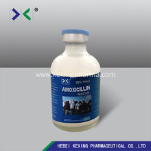 China for Amoxicillin Powder Animal Amoxicillin Injection Dosage supply to Netherlands Factory
