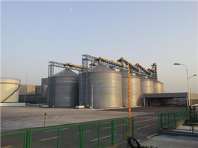 Edible Soybean Meal Dehulling