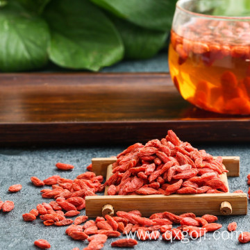 Factory supply organic superfood goji berries