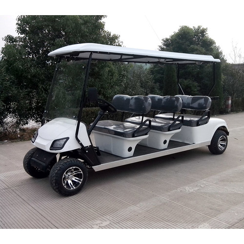 cheap electric or gas sightseeing car