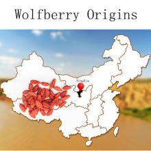 New Arrival Goji Berries natural wolfberry herbal tea