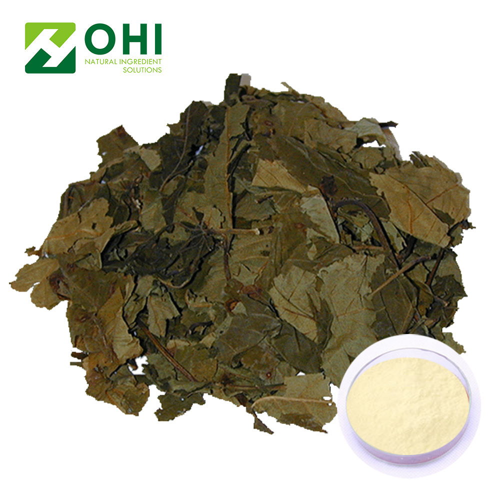 tea extracts sweet tea powder extract