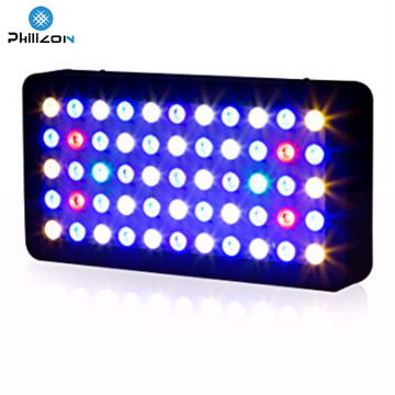 Popular Melhor Venda Inteligente LED Aquarium Light
