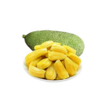 Tropical Fruit of Jackfruit