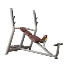 Professional Gym Fitness Equipment Incline Bench
