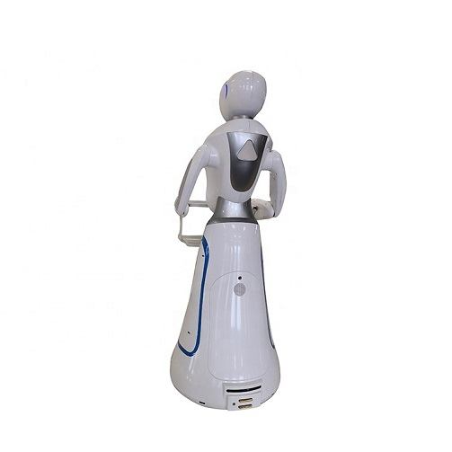 Delivery Food and Drink Cafe Waiter Robot