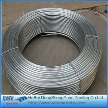 Building material Binding wire electro galvanized wire