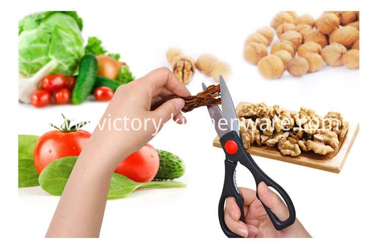 Household Kitchen Scissor