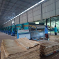 High Capacity Wood Veneer Dryer Machine