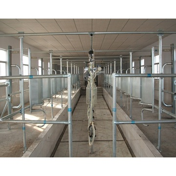 Automatic Cow Or Goat Milking Parlor Price