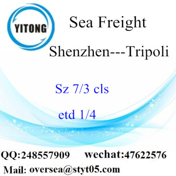Shenzhen Port LCL Consolidation To Tripoli