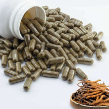 Wholesale Herbal Supplement Cordyceps Sinensis Capsule