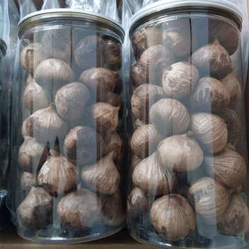 Popular black garlic by masses of people