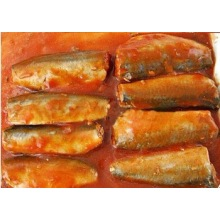 ODM for Healthy Canned Fish mackerek and sardines in tin supply to Ecuador Importers