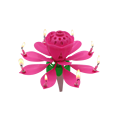lotus birthday music candle