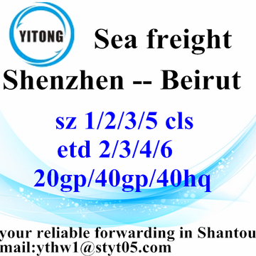 Shenzhen International Freight Forwarder Shipping to Beirut