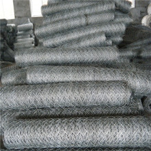 High Permance for  0.5 inch mesh opening chicken mesh galvanized export to Georgia Manufacturers