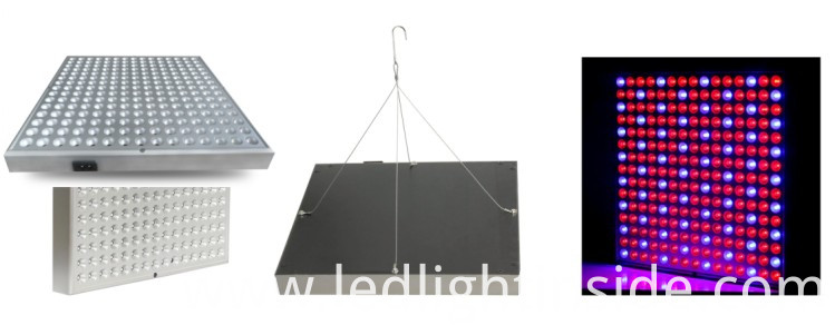 high quality grow light