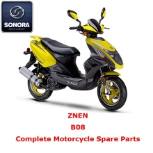 OEM/ODM China for Supply Znen Scooter Starter Motor, Znen Scooter Carburetor, Znen Scooter CDI to Your Requirements ZNEN B08 Complete Scooter Spare Part export to Netherlands Supplier