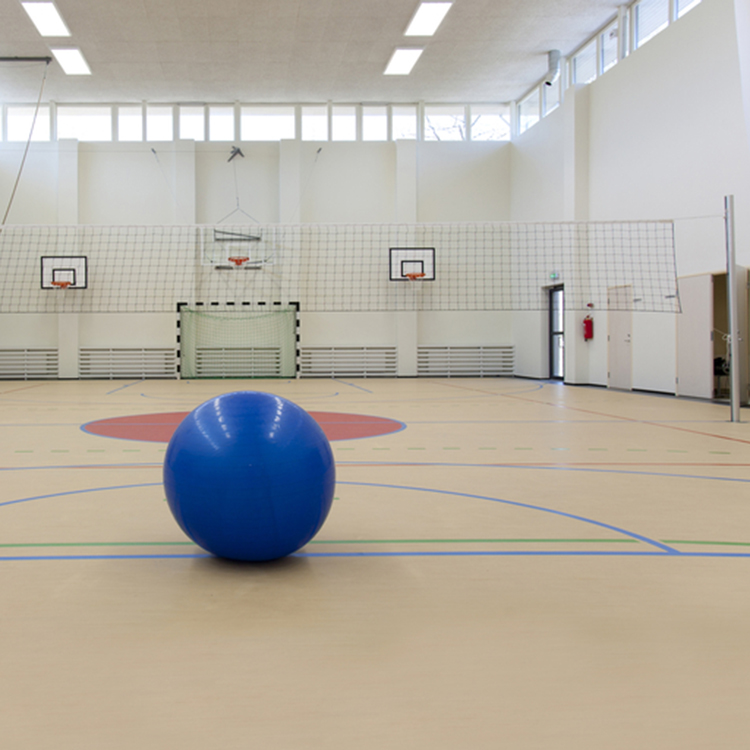 Pvc Floor Basketball
